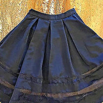 Express See Through Panels Full Circle Tucked Pleats Puff Skirt Photo