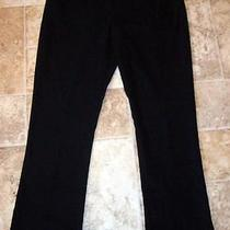 Express  Sexy Black Straight Leg Dress Pants  Size 6   Nice Ones  Photo