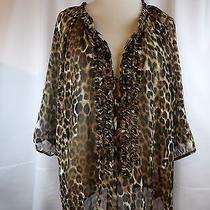 Express Sheer Blouse Large Cheetah Summer Party Club Photo