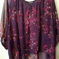 Express Sheer Blouse Size Large  Photo