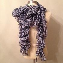 Express Sheer Blue & White Scarf  Photo