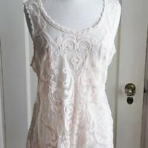 Express Sheer See Through Pink Lace Floral Blouse Size Large Photo