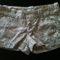 Express Shorts 2 Photo