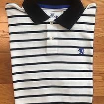 Express Shorts Sleeve Polo Rugby Shirt Men's Size L Black and White Striped Photo