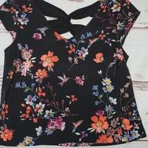 Express Silky Black Floral Hummingbird Print Corset Back Top Size X-Small Photo