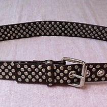 Express Silver Studded Leather Belt Photo