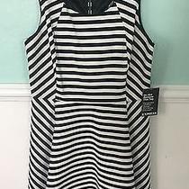 Express Size Medium Black and White Striped Dress. Nwt Photo