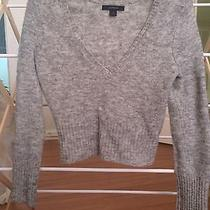 Express Size Medium Sweater  Photo