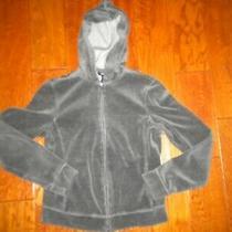 Express Size Small Gray Velour Full Zip Hooded Women Sweatshirt Jacket Photo