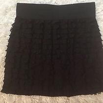 Express Skirt Medium Nwot Photo