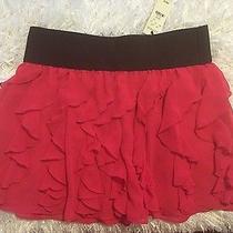 Express Skirt Medium Nwt Photo