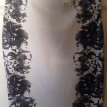 Express Skirt  Nwt 00 Photo