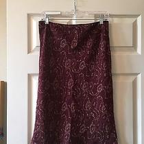 Express Skirt Size M Photo