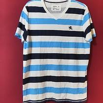 Express  Small Lion v- Neck Tee  Size  M ( Modern Fit )  Photo