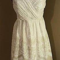 Express Strapless White & Beige Summer Dress 100% Cotton (Womens)8  Photo