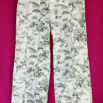 Express Stretch Black & White Nature Pattern Wide Leg Cotton Pants - Size 7/8 Photo