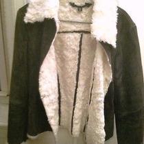 Express Suede Coat - Adorable Photo