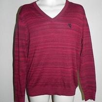 Express Sweater Mens Multi-Color Medium v-Neck Nwot Photo