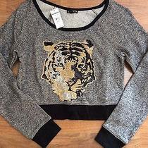 Express Sweatshirt Photo