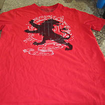 Express T-Shirt - Red - Medium -