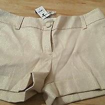 Express Tan Metallic Gold Shorts Size 2 Photo