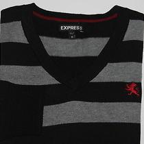 Express v-Neck Stripe Cotton Sweater-Medium  Photo
