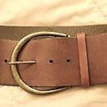 Express Wide Leather Belt Photo