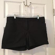 Express Women's Black Shorts 14 Photo