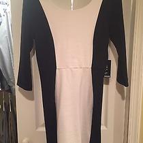 Express Women's Black/white Color Block Dress. Small Nwt.  Photo