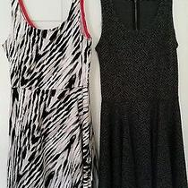 Express Women's Dresses Xs & Small Spring Dresses  Photo