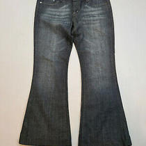 Express Womens Stella Jeans Size 8 Short Dark Wash Flare Low Rise Pants Photo