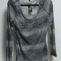 Express Womens Top New Photo