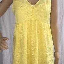 Express Yellow Lace Dress Sexy Stretchy Sleeveless Party Dress - Medium Photo
