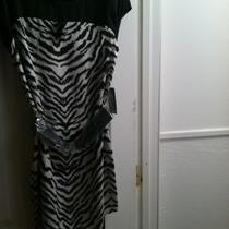 Express Zebra Print Dress With Belt  New With Tags Size Xs Photo