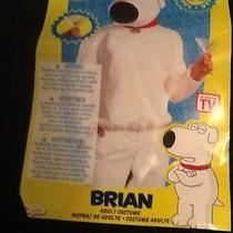 Family Guy Brian Griffin  White Dog Plush Halloween Costume Adult Xl Photo