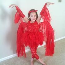 Fancy Girls Devil Costume Photo