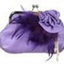 Fashion Trendy Accessories Evening Bag Purse T0008 Purple Photo