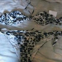 Fendi Bikini Photo