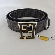 Fendi Men's College Brown Zucchino Spalmati Logo Buckle Beltsize 100/40         Photo