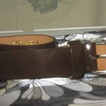 Fendi's Men Leather Belt Photo