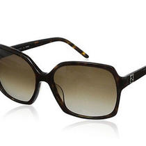 Fendi Sunglasses Brown Photo