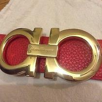 Ferragamo Belt Hermes Belt Gucci Belt Vesa E Belt Fendi Belt Louis Vuitton Belt Photo