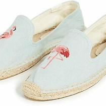 Flamingo Smoking Slipper Chambray Photo