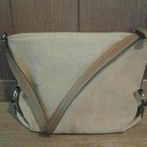 Flirtacious Fossil Handbag/purse for You Photo