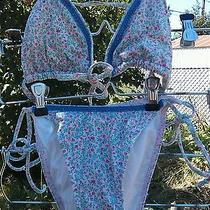 Floral Bikini Pinks and Blues  Photo