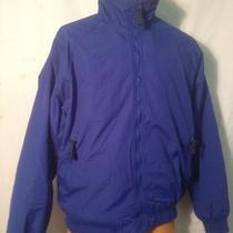 Forest & Hue Blue Mens Winter Coat Large Photo