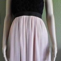 Forever 21 Black and Blush Beige Tulle and Roses Strapless Dress Size Small Photo