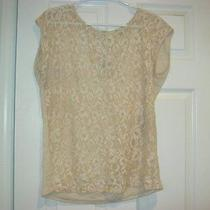 Forever 21 Blush Lace Stretch Knit Top Sz Large Photo