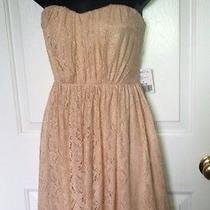 Forever 21 Blush Pink Lace Strapless Mini Fully Lined Dress Sz M Nwt Photo