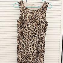 Forever 21 Leopard Dress  Photo